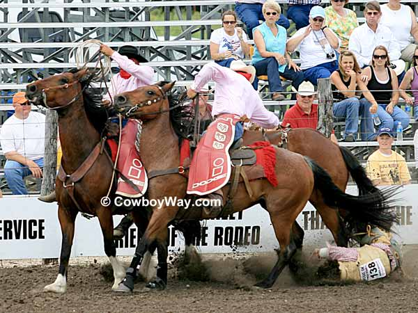 Rodeo pickup men and a fallen bronc rider