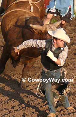 A bull riding vest helps protect bull riders from injury