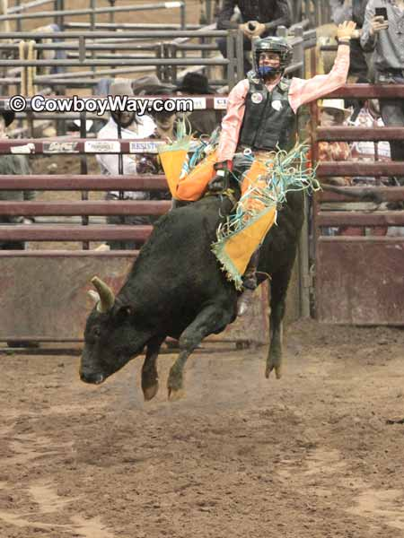 A bull rider rides a bull as it jumps into the air