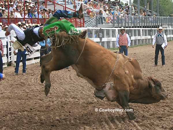 Bull riding at Cheyenne Frontier Days Rodeo