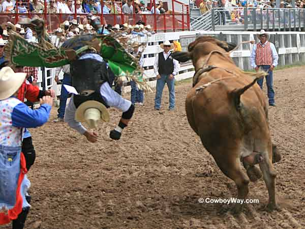 A bull rider upside down in the air