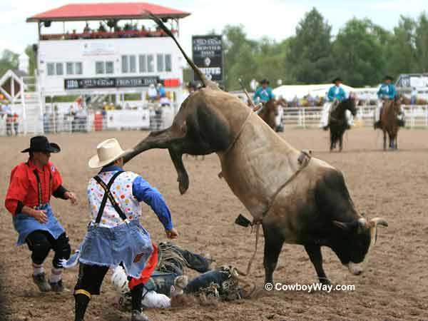 A bull rider gets bucked off
