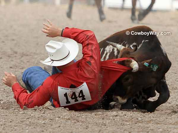 A steer rips the shirt off a steer wrestler