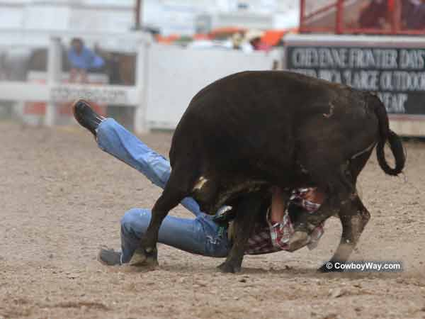A steer wrestler continues to struggle with his steer