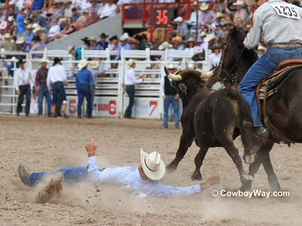 A steer wrestler crashes to the ground