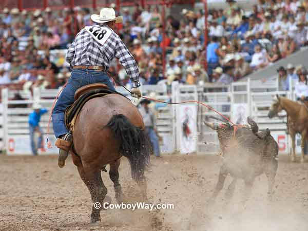 Team roping header Lance Brooks