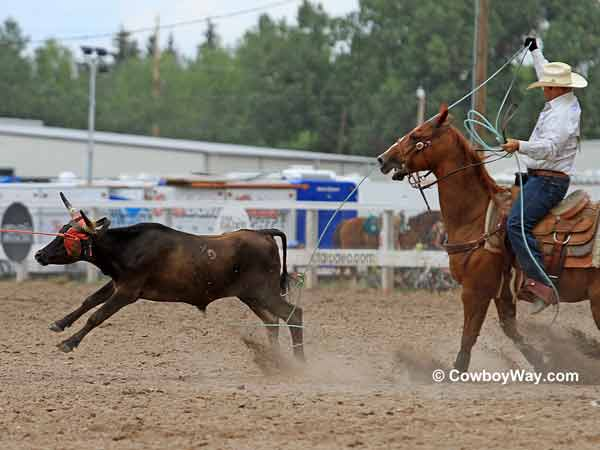 Team roping heeler Ryan Motes