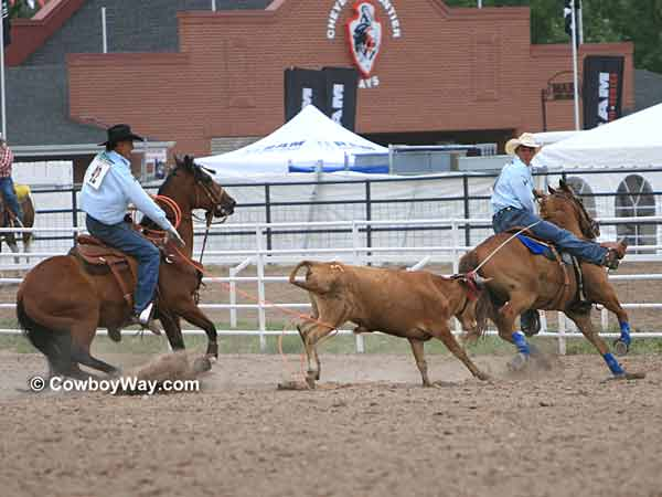 Team roping: Allen Bach (left) and Joel Bach  (right)
