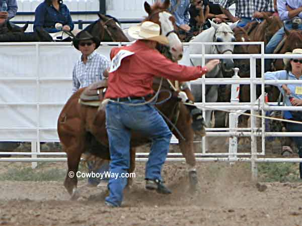 A calf roping horse with his leg  over the rope