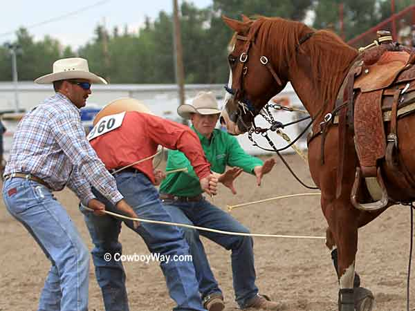 A tie-down roper cuts his rope