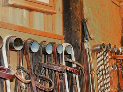 A handy bridle rack idea: Tin cans holding bridles