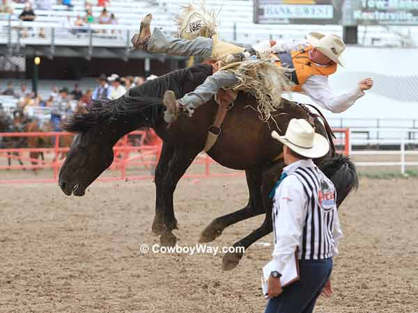 A rodeo judge watches a bronc ride