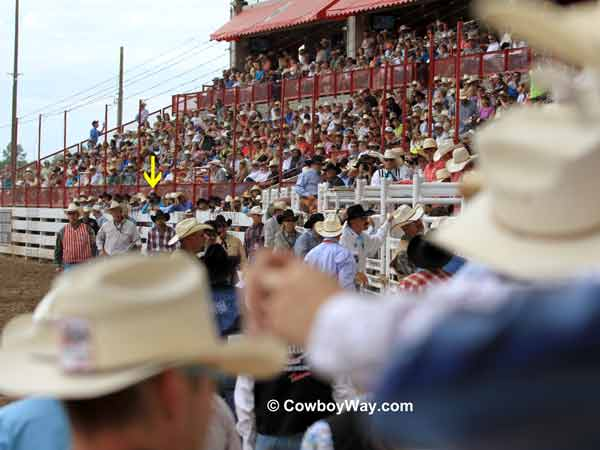 In front of the bucking chutes,  Cheyenne Frontier Days Rodeo