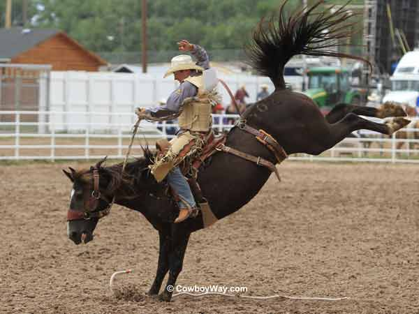Saddle bronc rider Dusty Hausauer and saddle bronc Tinker Bell