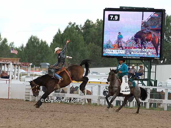 A saddle bronc rider and his bronc  buck in front of the big screen
