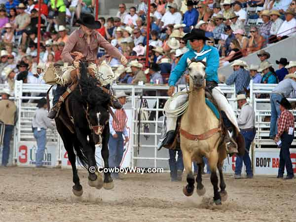 A saddle bronc rider looks  for a pickup man