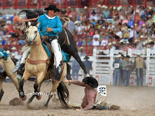 A saddle bronc rider falls next to the pick up horse