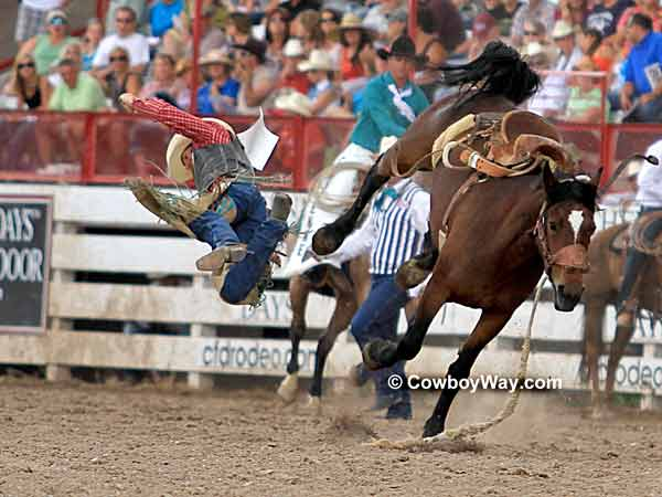 Saddle bronc rider getting bucked off