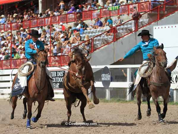 A saddle bronc and pickup man at the Cheyenne Frontier Days Rodeo