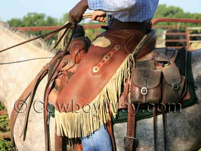 A cowboy wearing chinks to rope calves