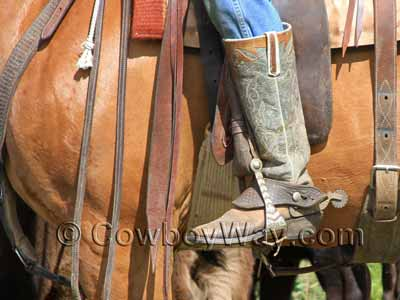 Dove wings worn by a working cowboy