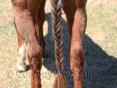 Secure the bottom of the braid with an elastic band