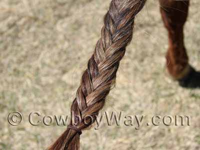 A completed fishtail braid in a horse's tail