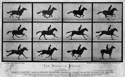 A series of black and white photographs showing a galloping horse named Sallie Gardner