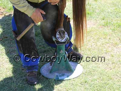 This Hoofjack hoof stand is holding a horse's hoof