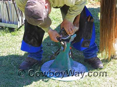 Farrier using a Hoofjack to support a horse's hoof