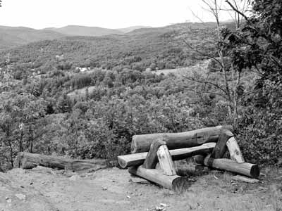 A log bench near Woodstock, Vermont