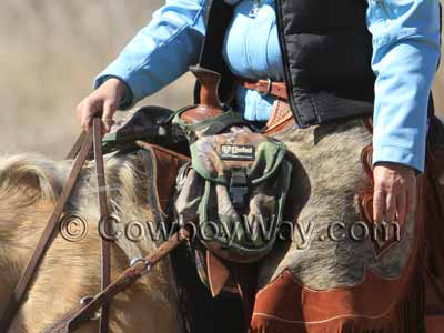 A trail rider with pommel saddle bags
