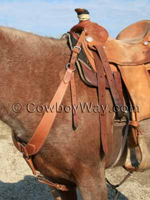 A pulling breast collar on a roan horse