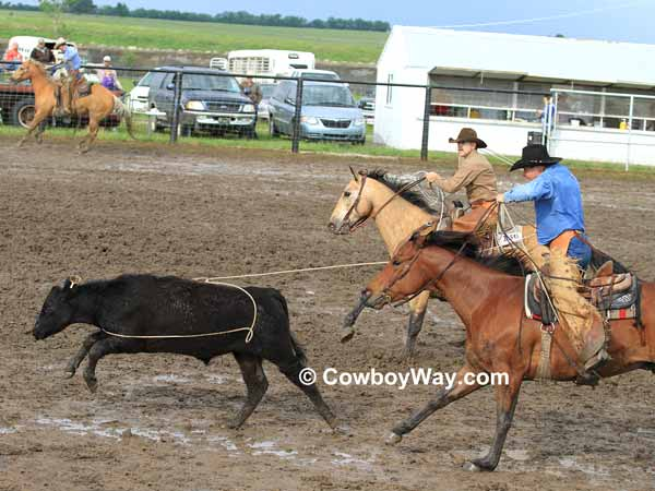 A cowboy ropes a steer in a muddy arena
