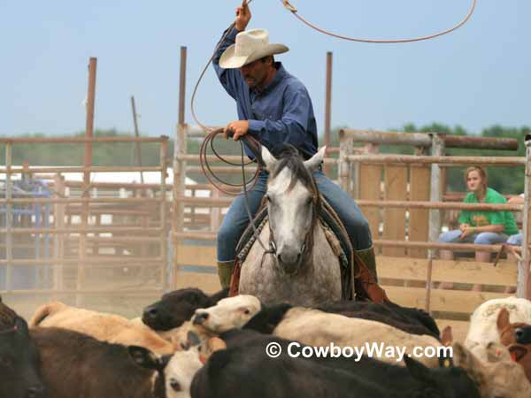 A cowboy ropes in the calf branding