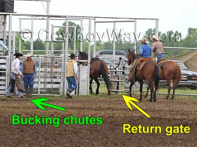 The rodeo return gate and a bronc