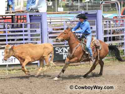 Roping saddle at a ranch rodeo