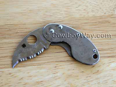 Serrated clip knife