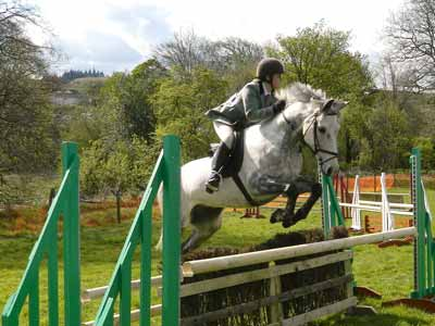 An ascending oxer with slanted wing jump standards