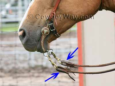 Water loops with split reins