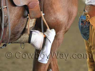 Bell boots and splint boots attached to a stirrup