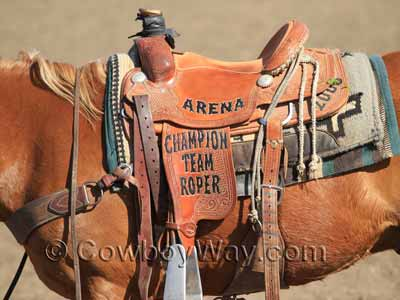 Trophy saddle