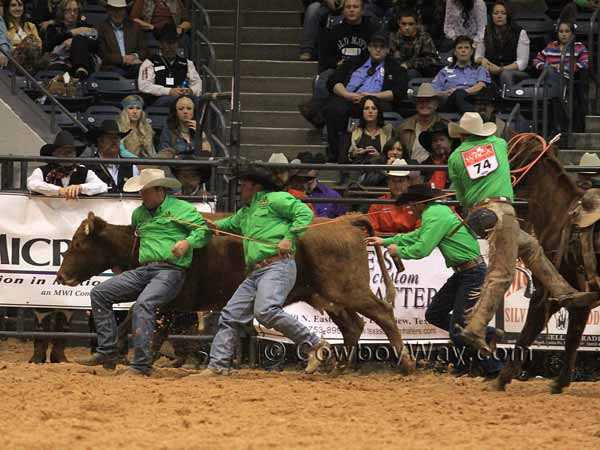 Ranch rodeo team members rope and try to control a cow
