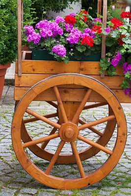 A wagon wheel planter in a yard for decor