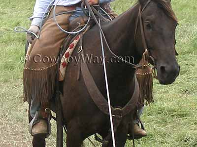 Western pulling breast collar