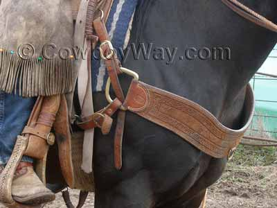 A Western breast collar on a ranch horse