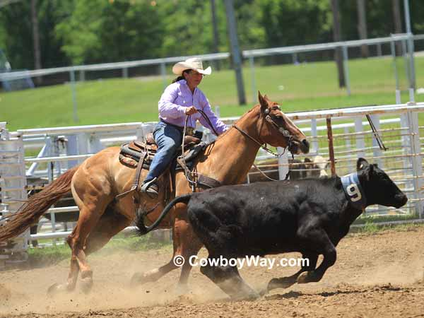 Sorting a calf at a women's ranch rodeo