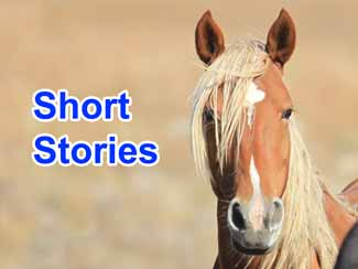 Short stories for cowboys, cowgirls, and horse lovers