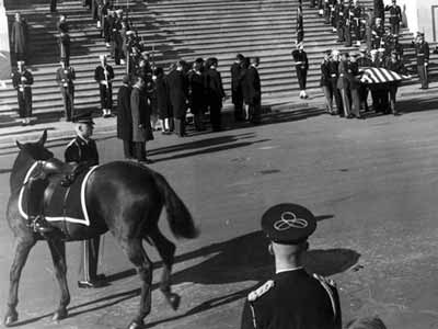 Black Jack the horse and the coffin of JFK